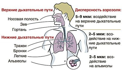 дисперсность и воздействие аэрозоля ингалятора на дыхательные пути